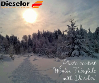 "Contest ""Winter Fairytale with Dieselor"""